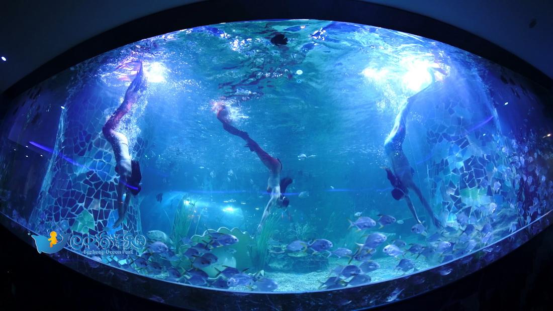 海洋乐园 (2).jpg